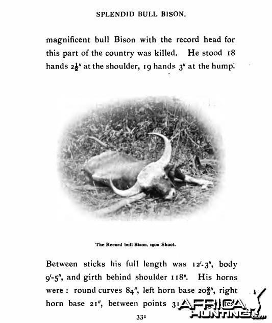 record gaur bull