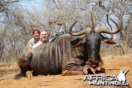 Motsomi Safaris - Blue wildebeest
