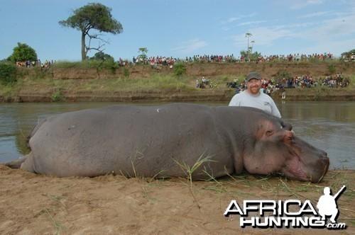 Motsomi Safaris - Hippo
