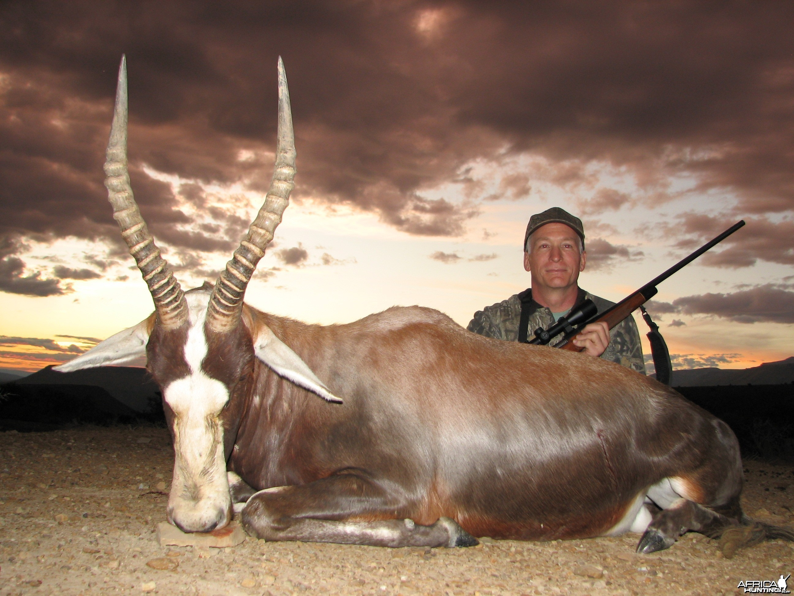 Blesbuck hunted with Andrew Harvey Safaris