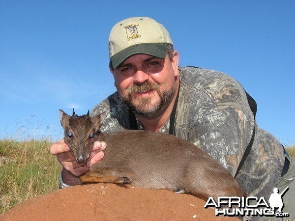 Blue Duiker hunted with Andrew Harvey Safaris