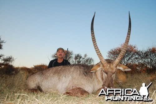 Motsomi Safaris - Waterbuck