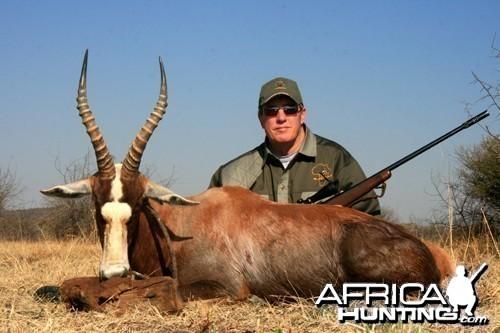 Motsomi Safaris - Blesbuck
