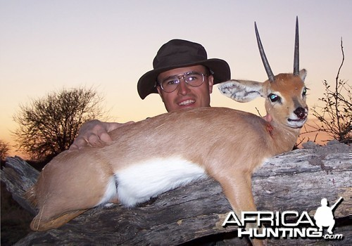 Motsomi Safaris - Steenbuck