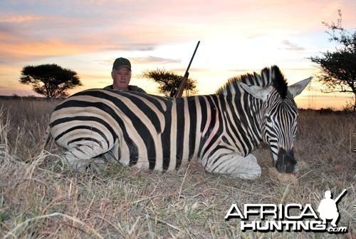 Motsomi Safaris - Zebra