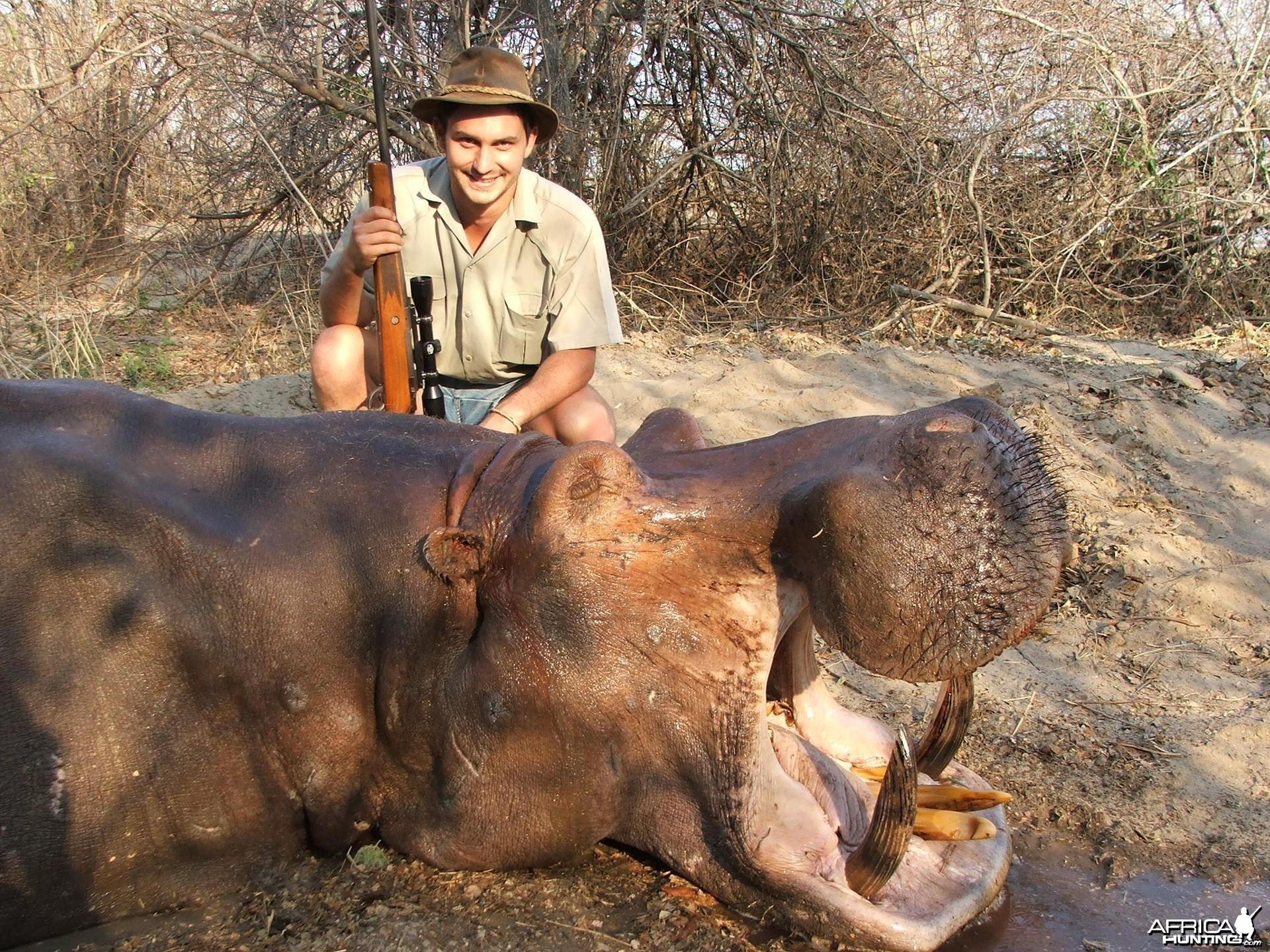 Hippo Zambia