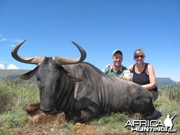 Blue Wildebeest taken with Andrew Harvey Safaris