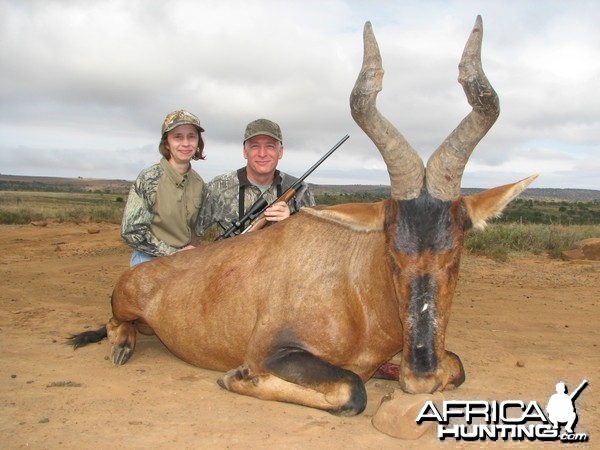 Red Hartebeest hunted with Andrew Harvey Safaris