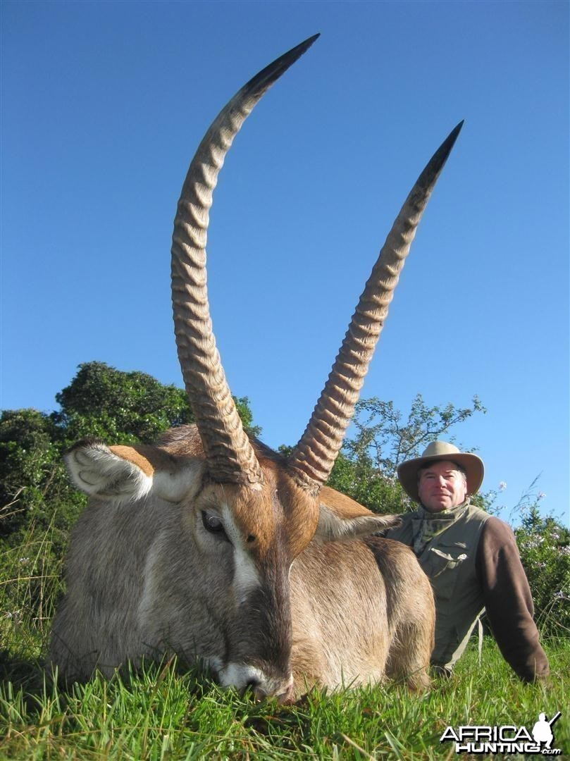 Waterbuck hunted with Andrew Harvey Safaris