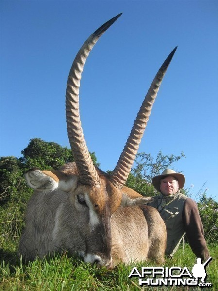 Waterbuck hunted with Andrew Harvey Safaris