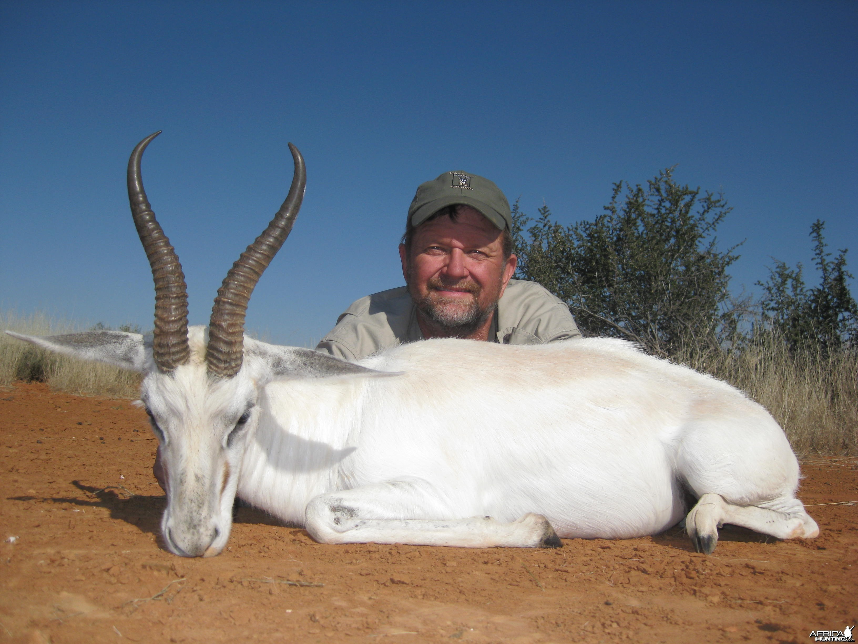 White Springbuck hunted with Andrew Harvey Safaris