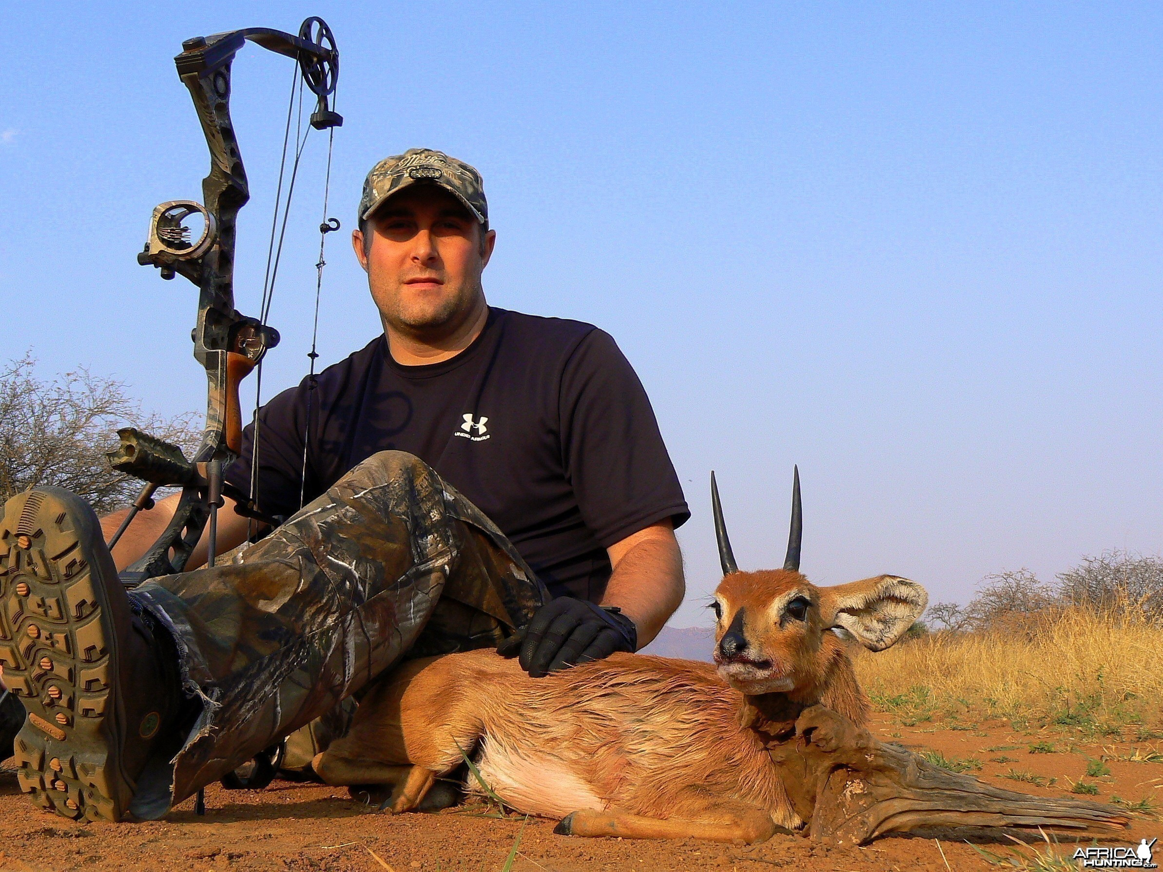 Steenbok bowhunted at Ozondjahe Hunting Safaris Namibia