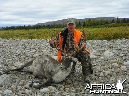 Caribou Hunt 2011, Quebec