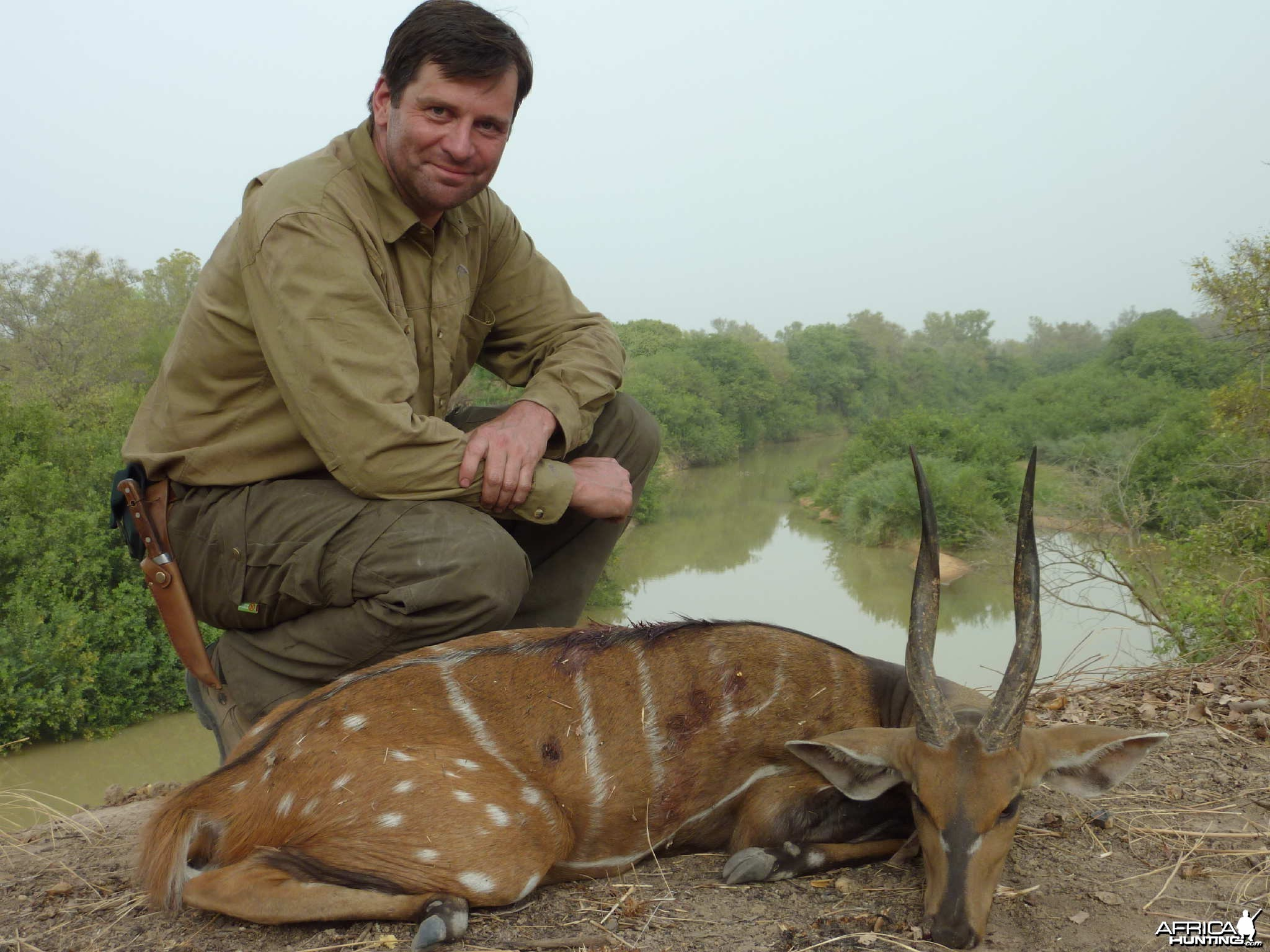 Harnessed Bushbuck hunted in Benin with Club Faune