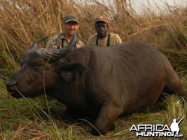 West African Savannah Buffalo hunted in Benin with Club Faune