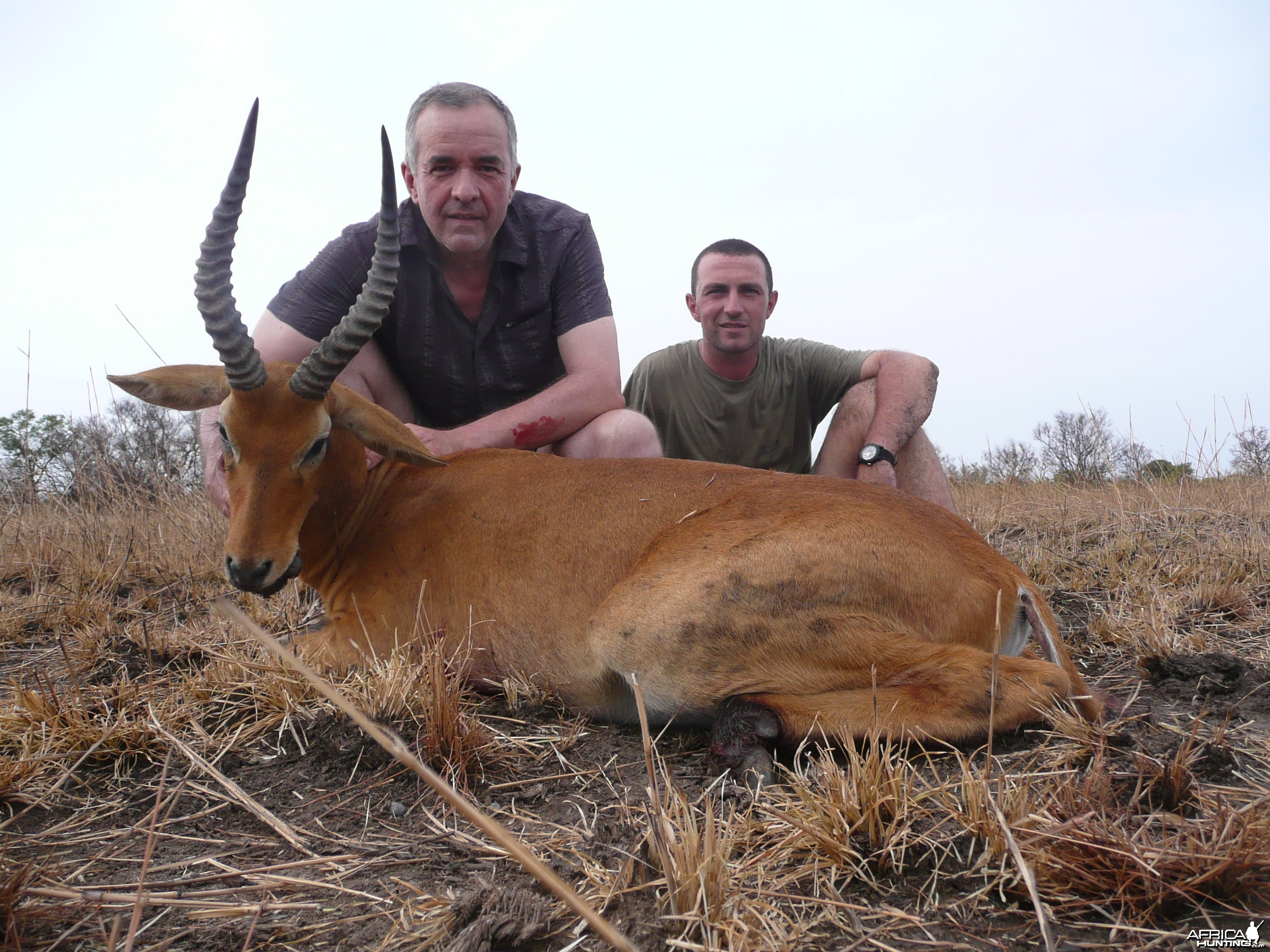 Western/Buffon Kob hunted in Benin with Club Faune