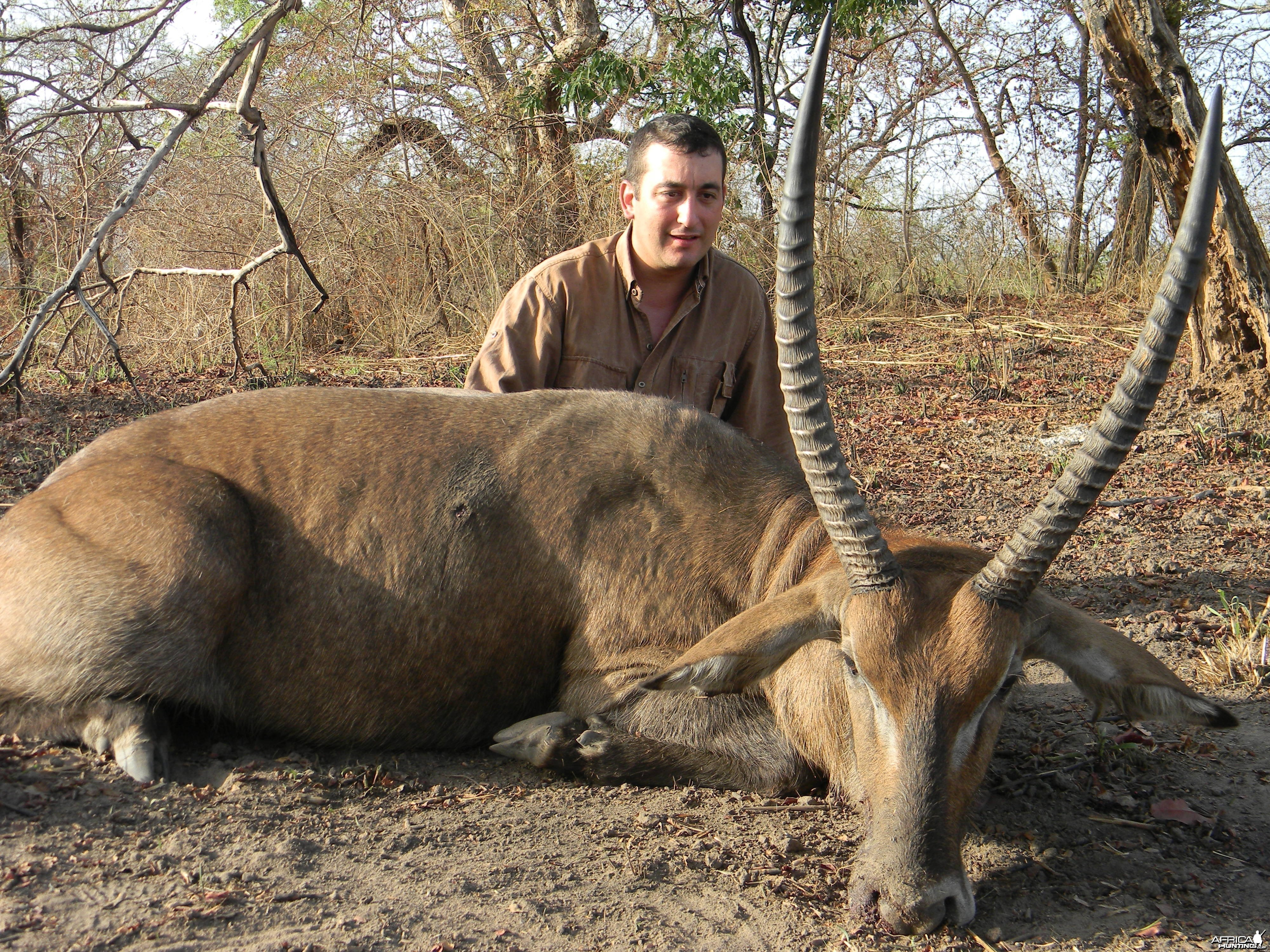 Defassa Waterbuck hunted in Benin with Club Faune