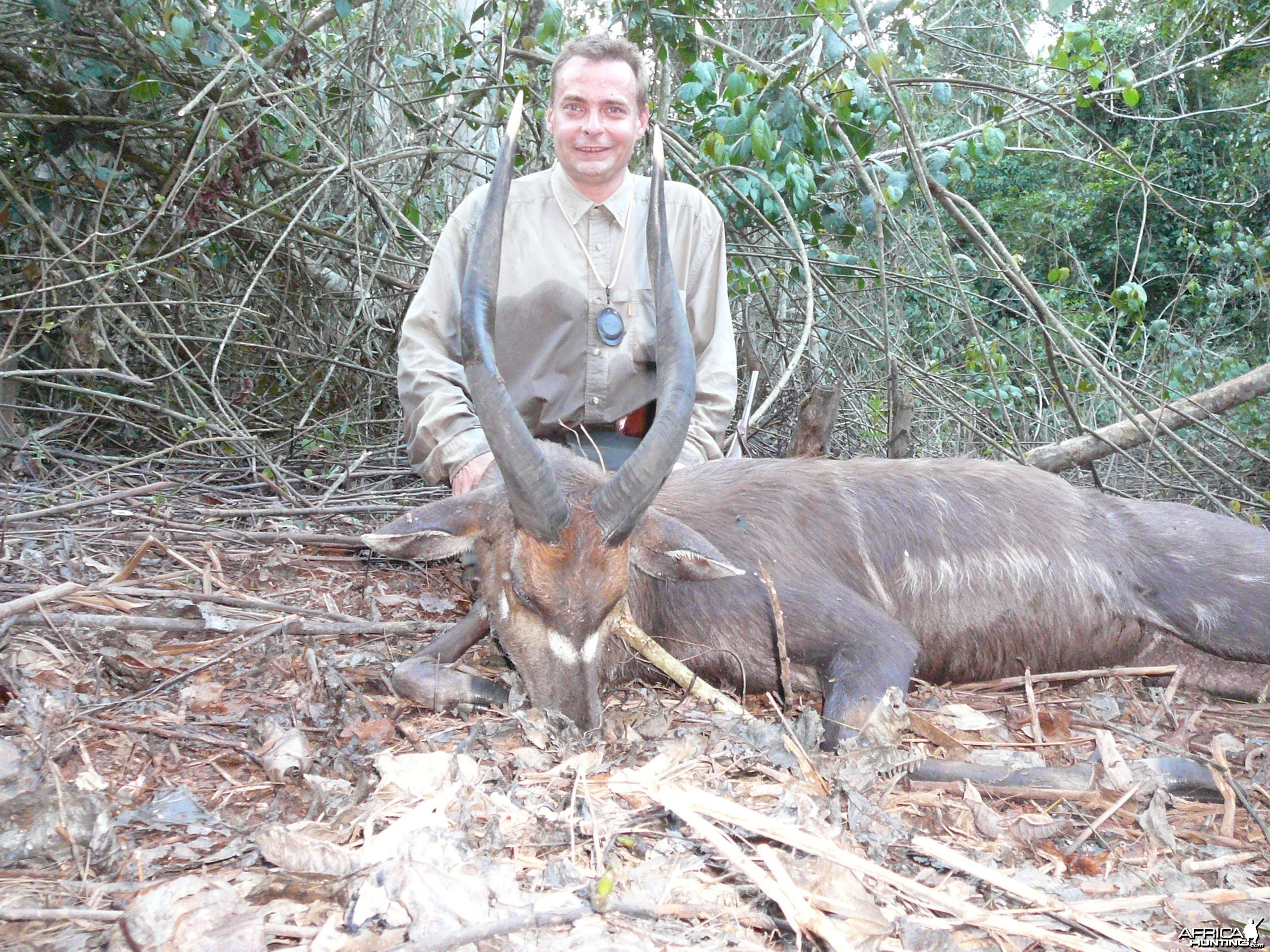 Western Sitatunga hunted in Cameroon with Club Faune