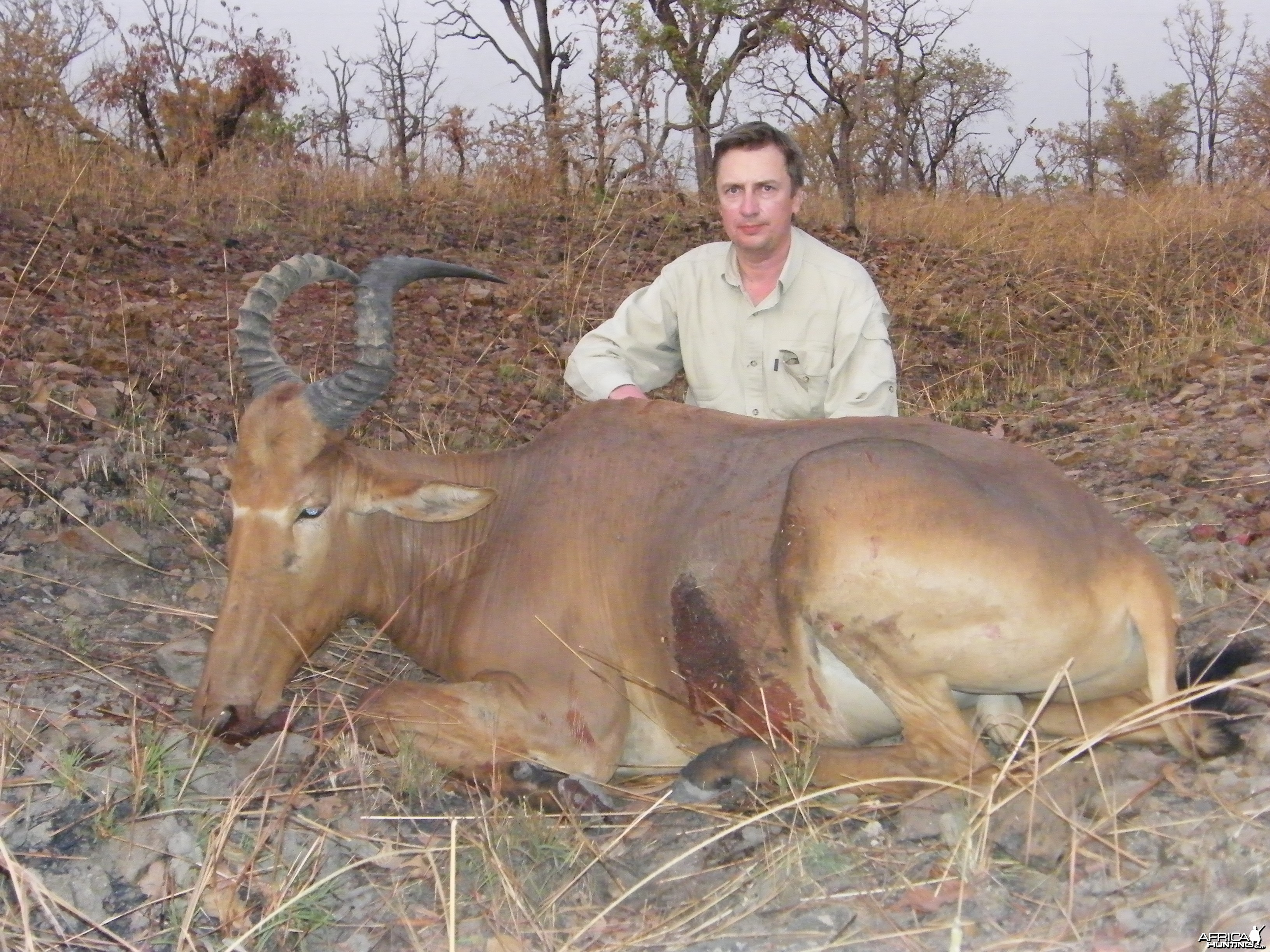 Western Hartebeest hunted in Benin with Club Faune