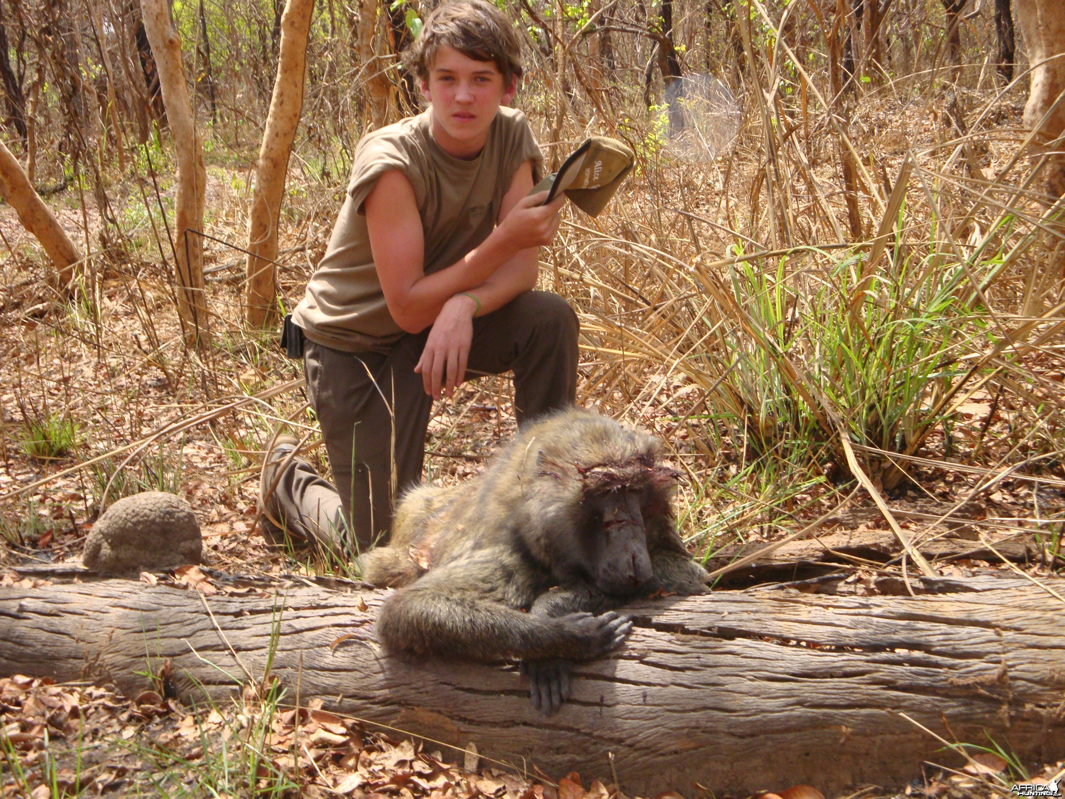 Baboon hunted in Central Africa with Club Faune
