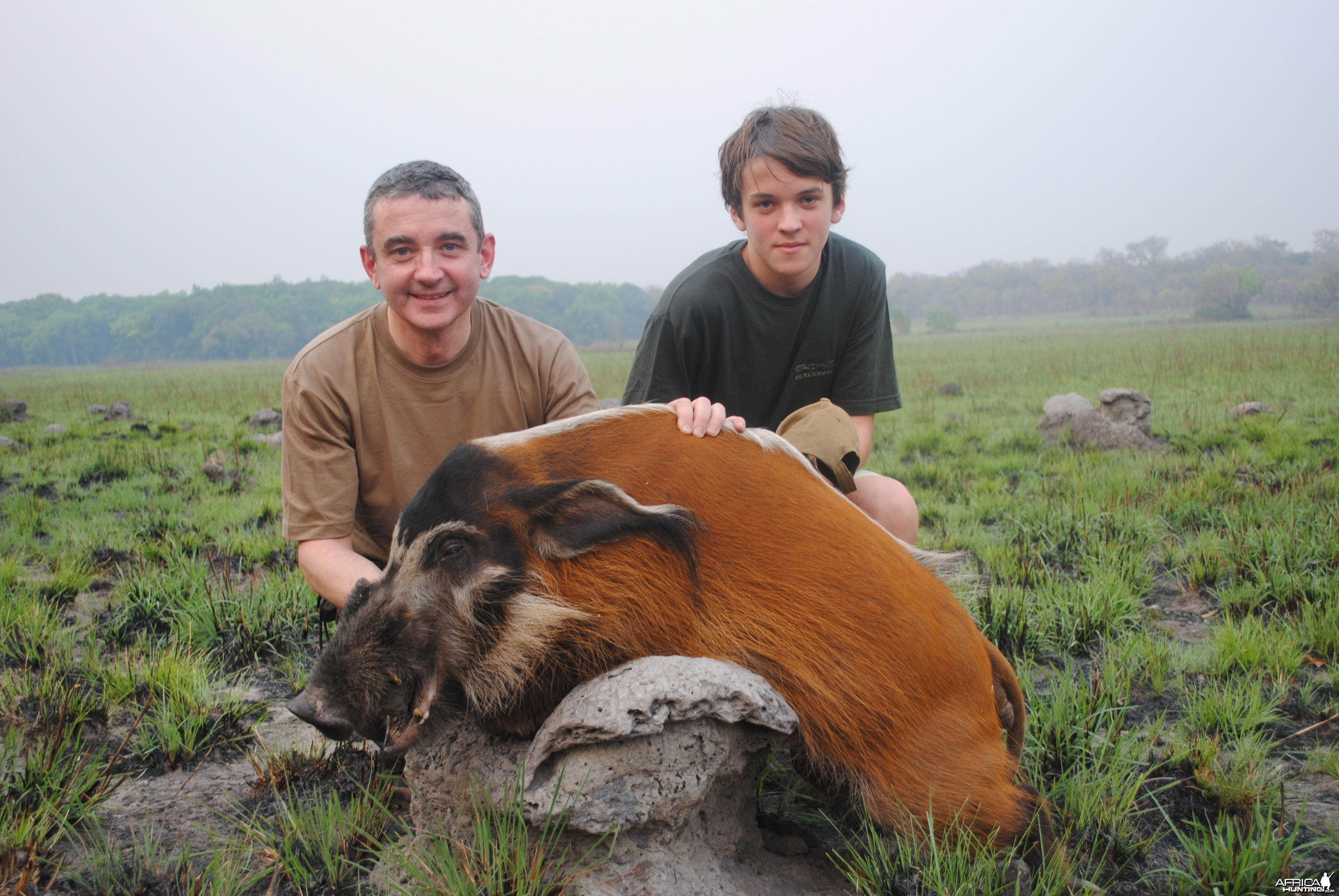 Red River Hog hunted in Central Africa with Club Faune