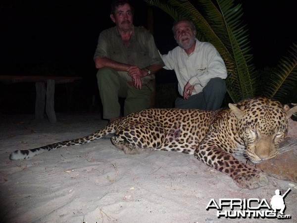 Leopard hunted in Central Africa with Club Faune