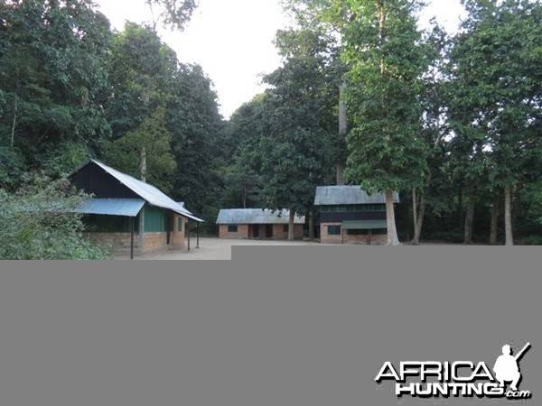 Hunting camp in Congo