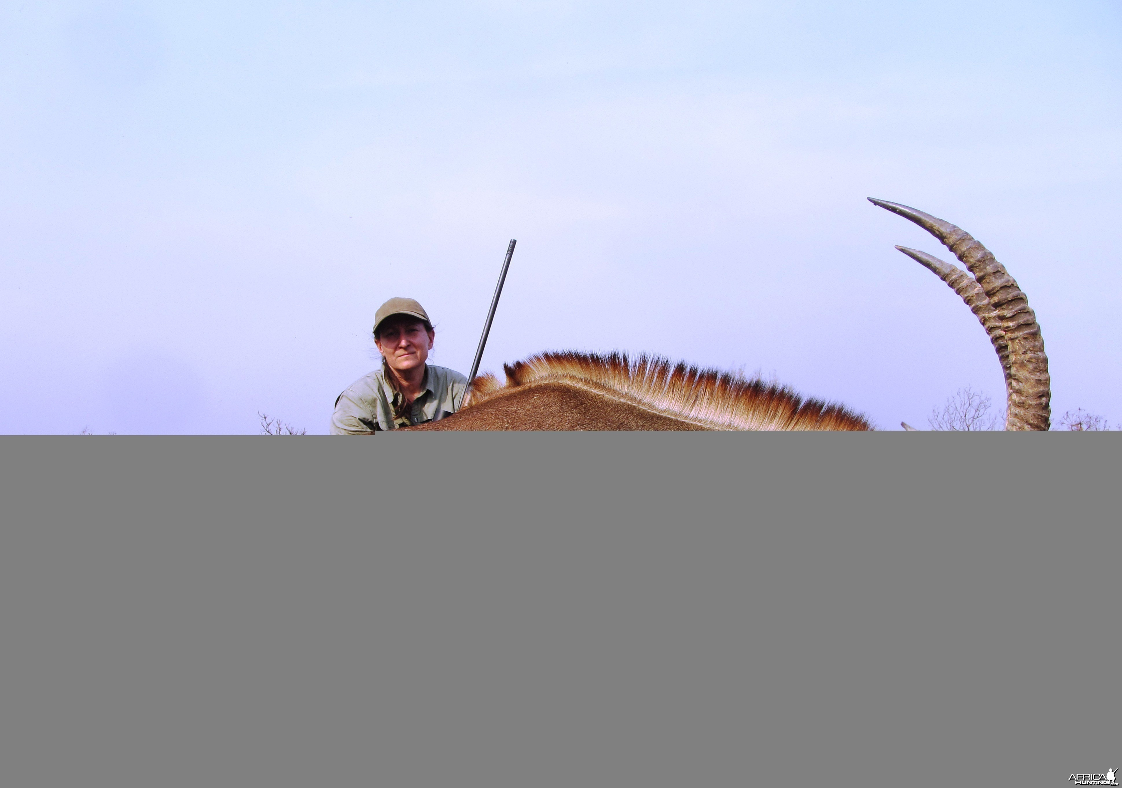 Roan Antelope hunted in CAR