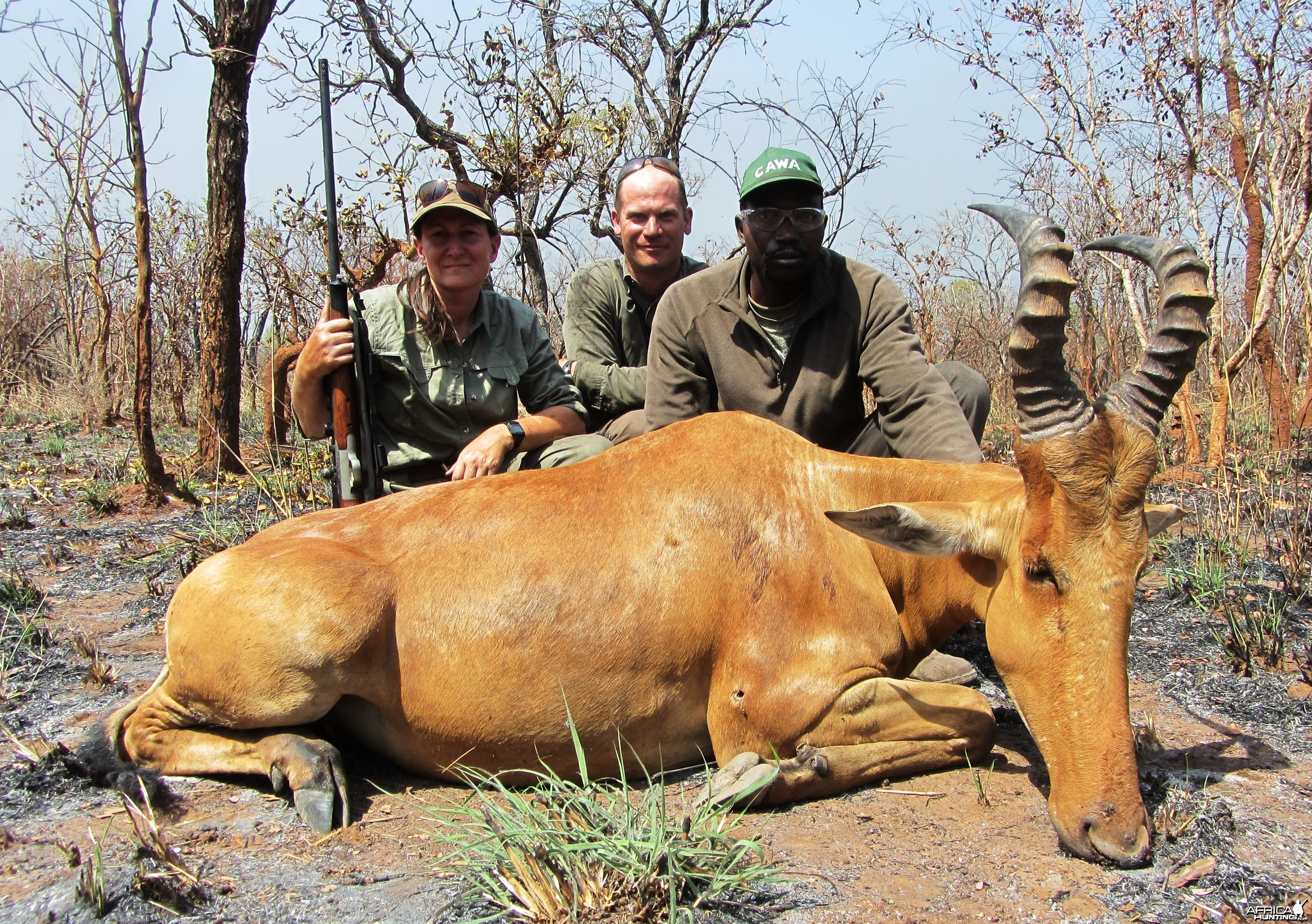Lelwed Hartebeest hunted in CAR