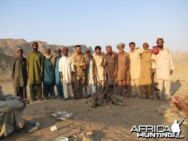 Ibex Pakistan