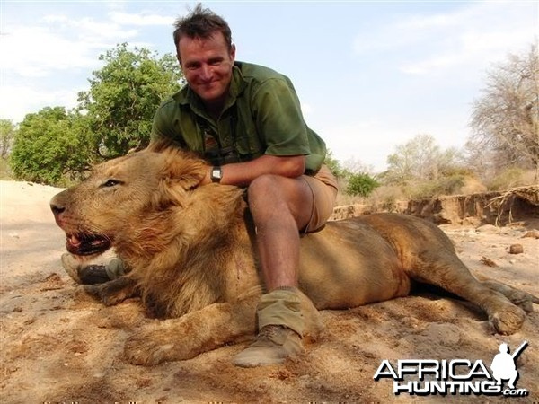 Lion hunted by tracking... A fantastic hunt!