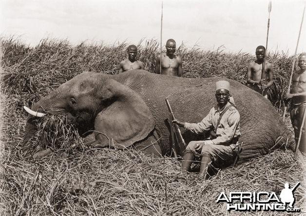 Elephant hunt circa 1920