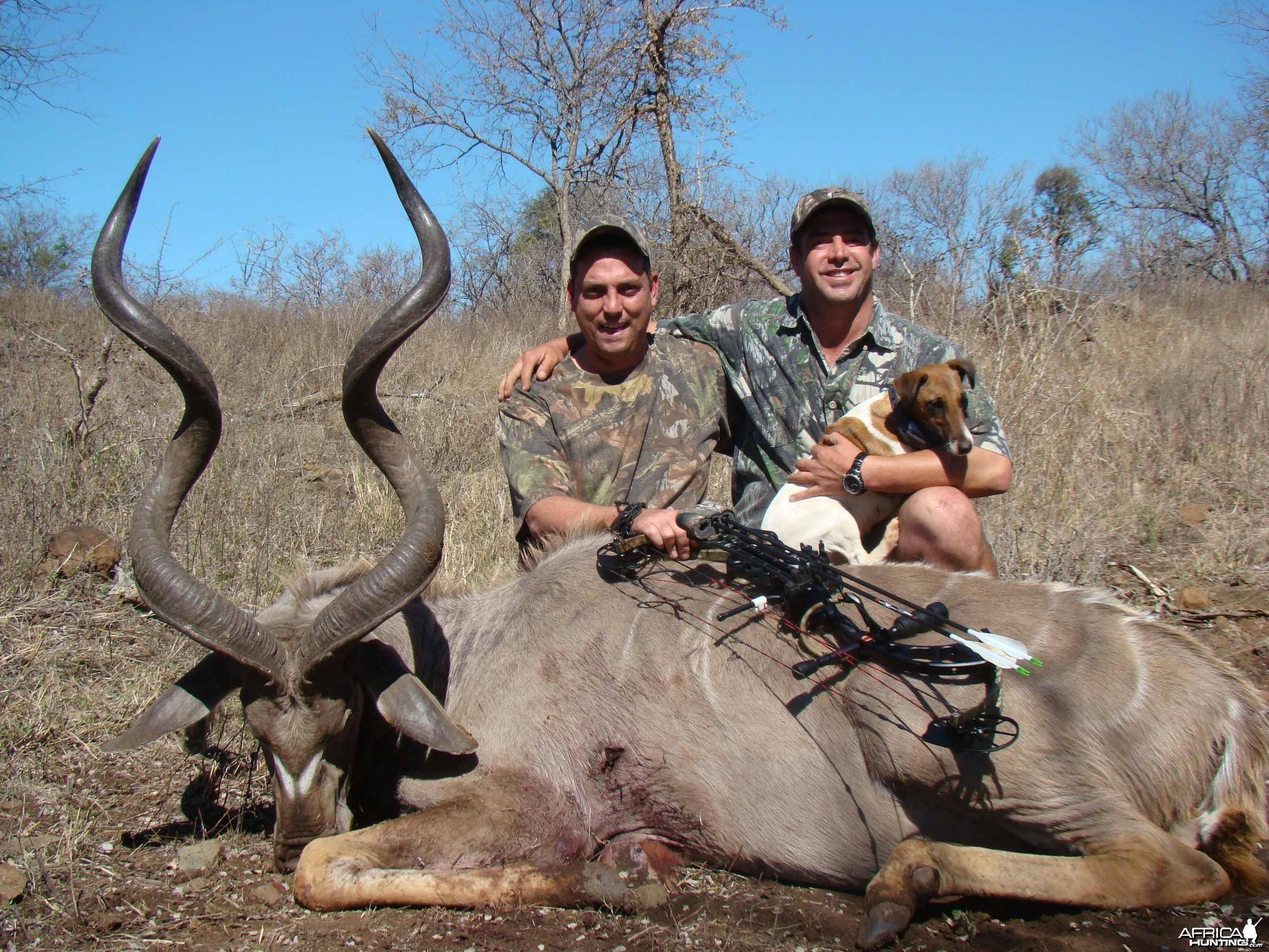Bow Hunting Kudu