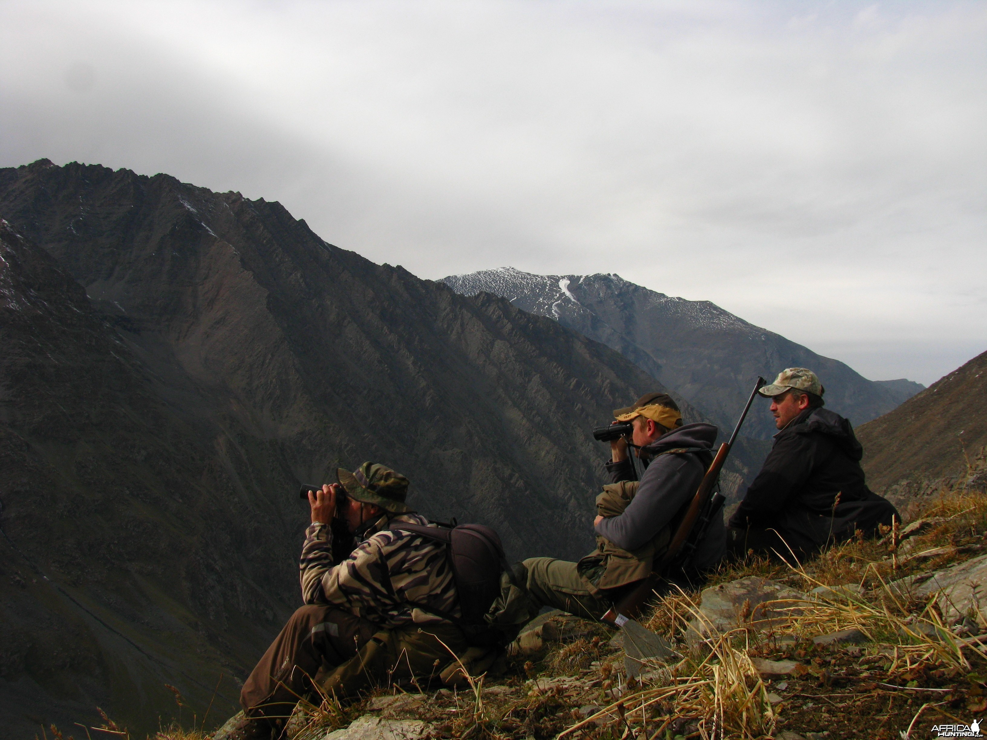 Glassing for Ibex
