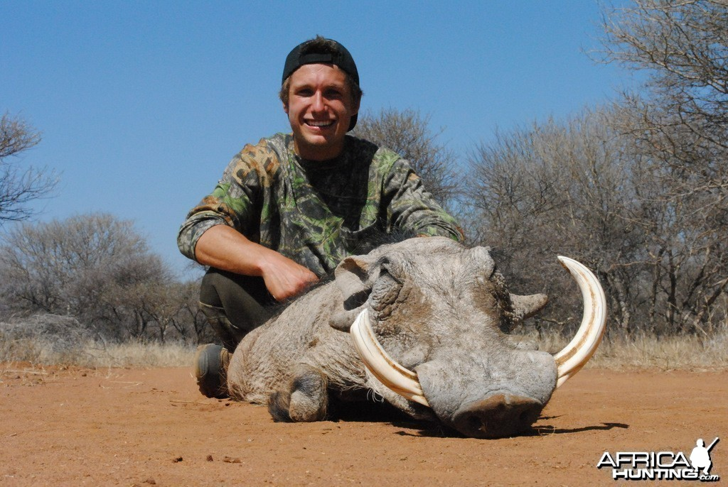 Warthog - Spiral Horn Safaris