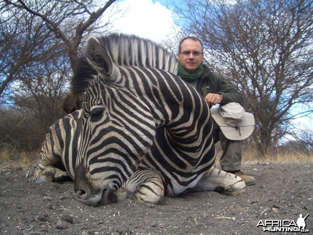 Zebra - Spiral Horn Safaris