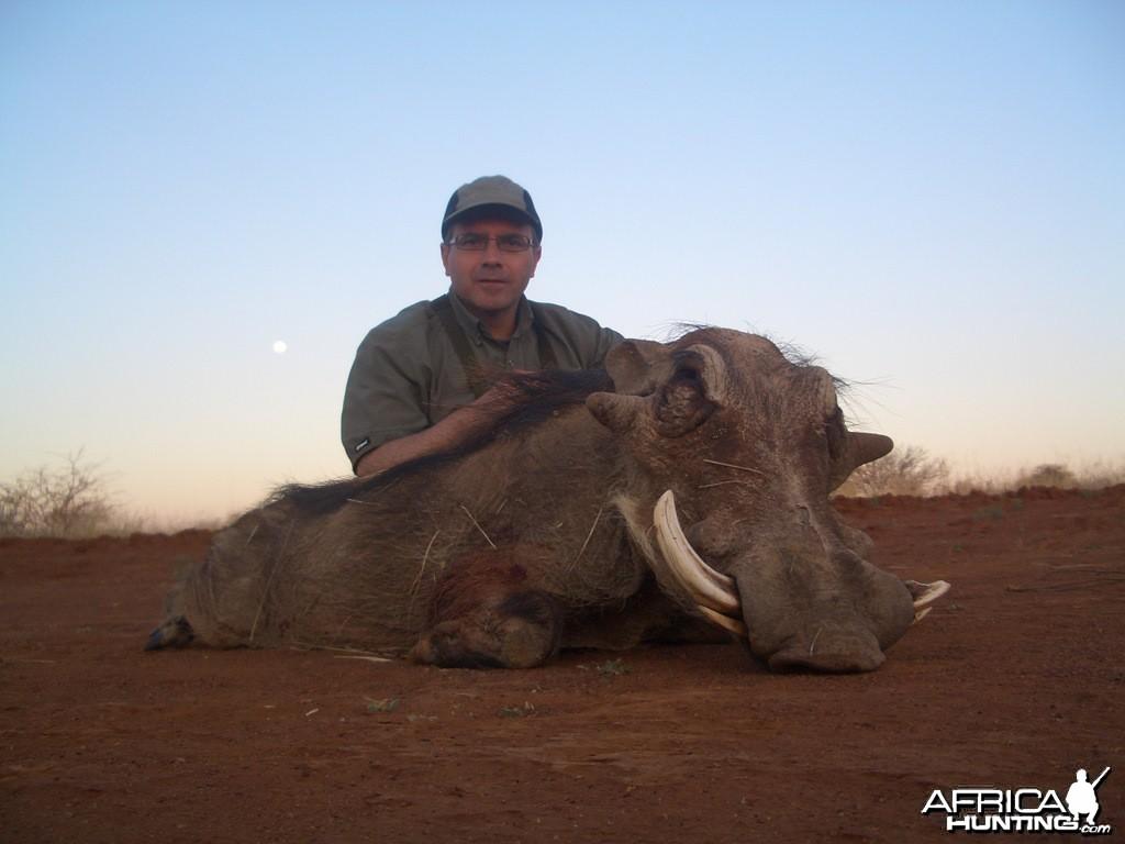 Warthog- Spiral Horn Safaris