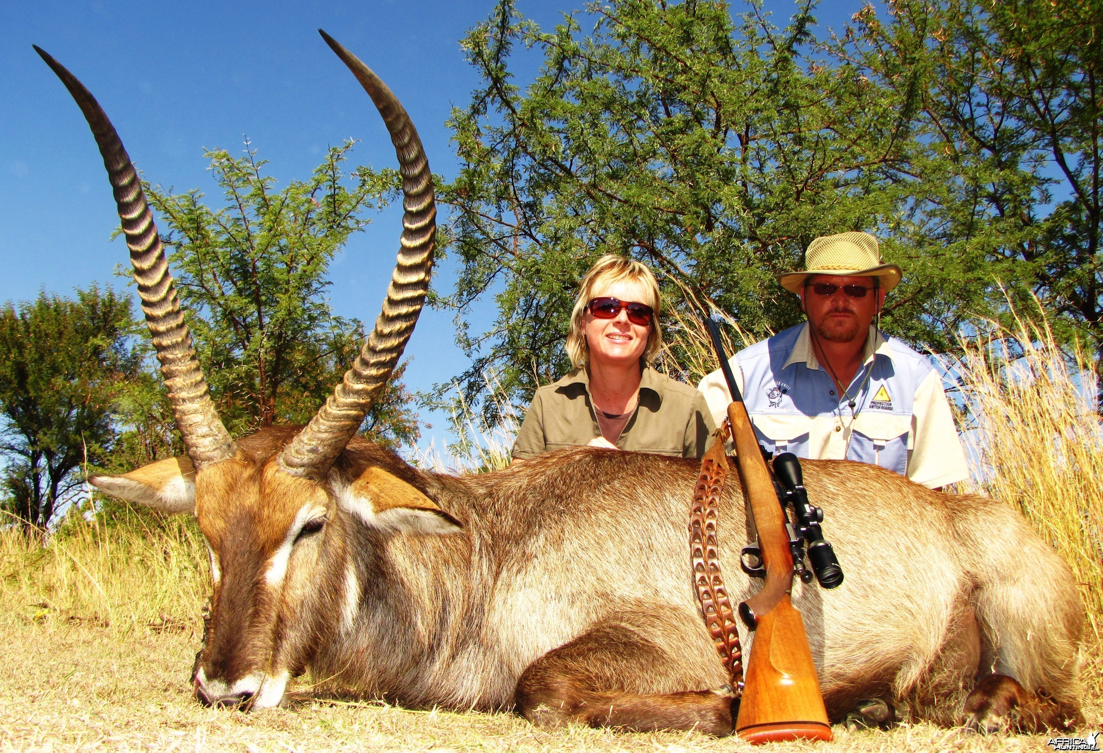 "HUGE 29"" Waterbuck"