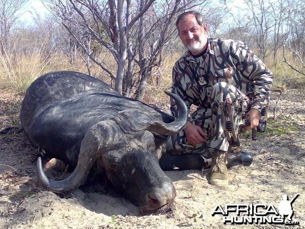 Buffalo Zambia