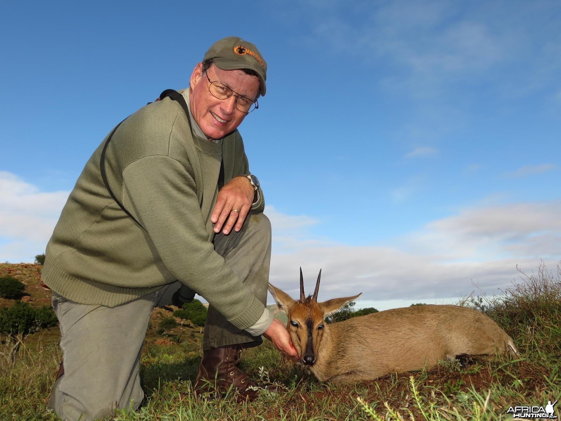 Duiker South Africa
