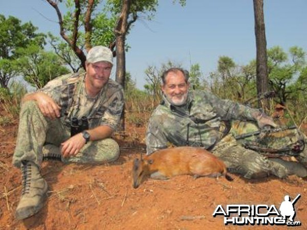 Red Flanked Duiker CAR