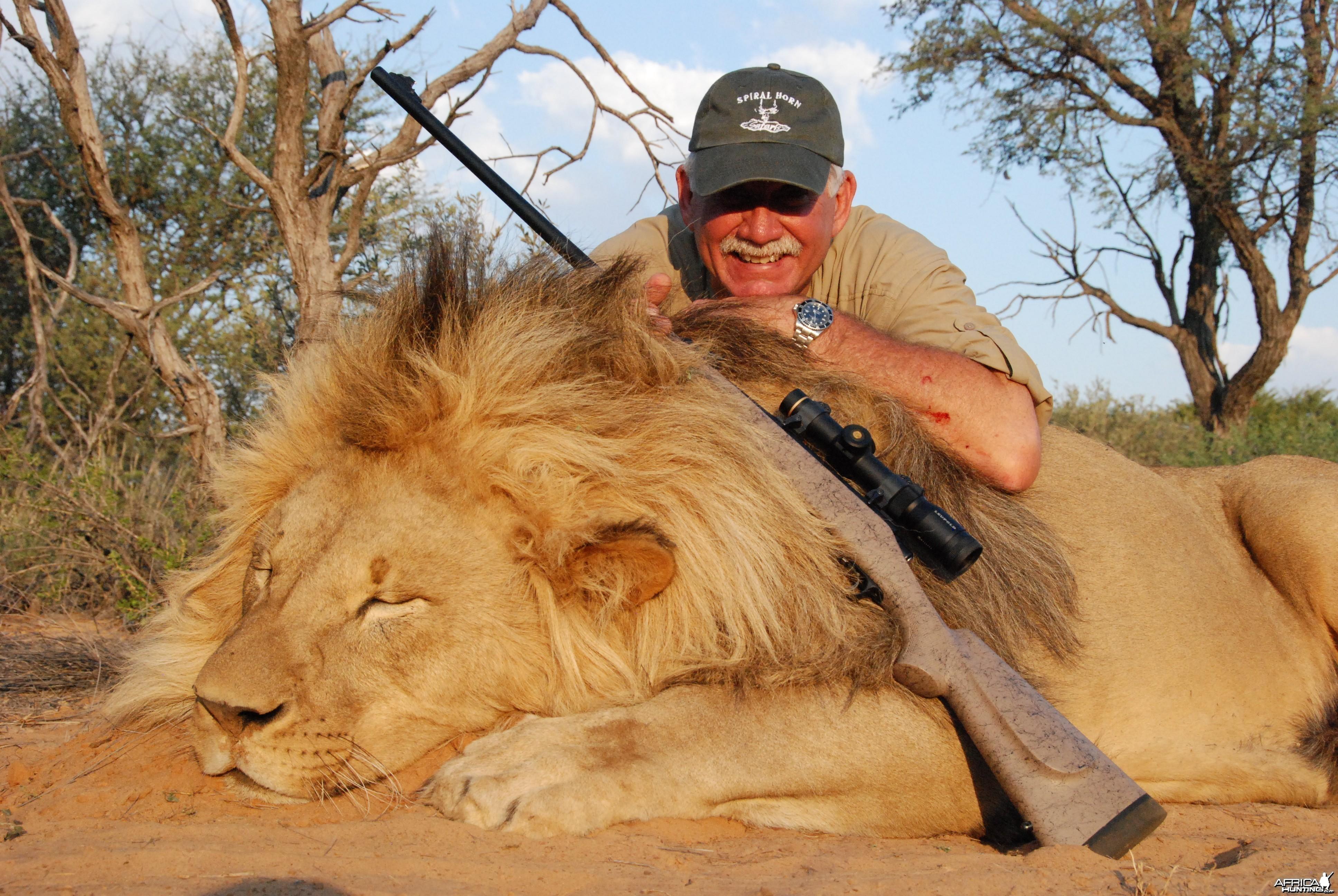 Full Mane Lion