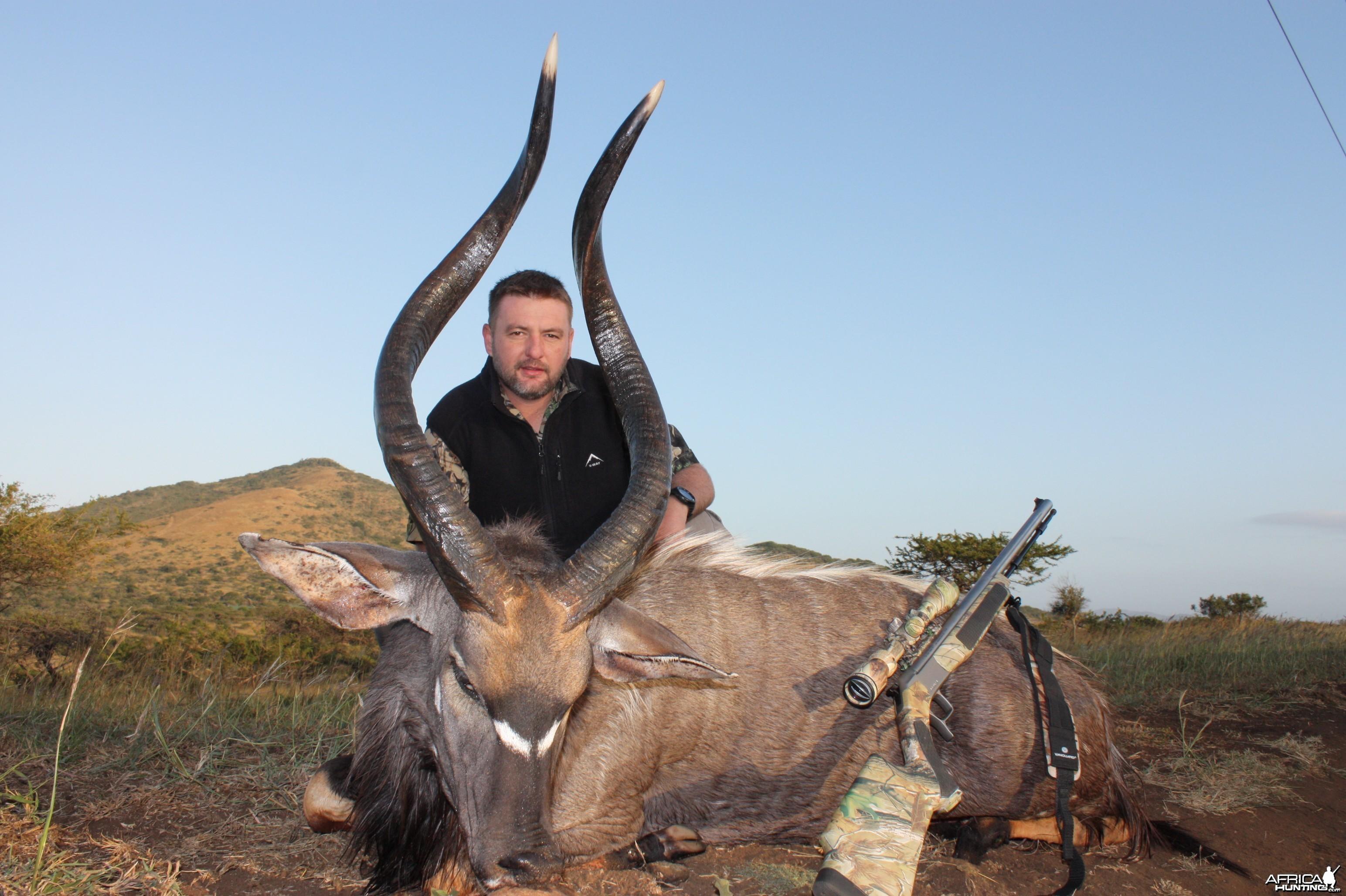 Nyala - KZN - South Africa