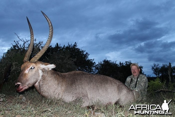 Rocky Jackson's magnificent Waterbuck, shot at Induna Safaris