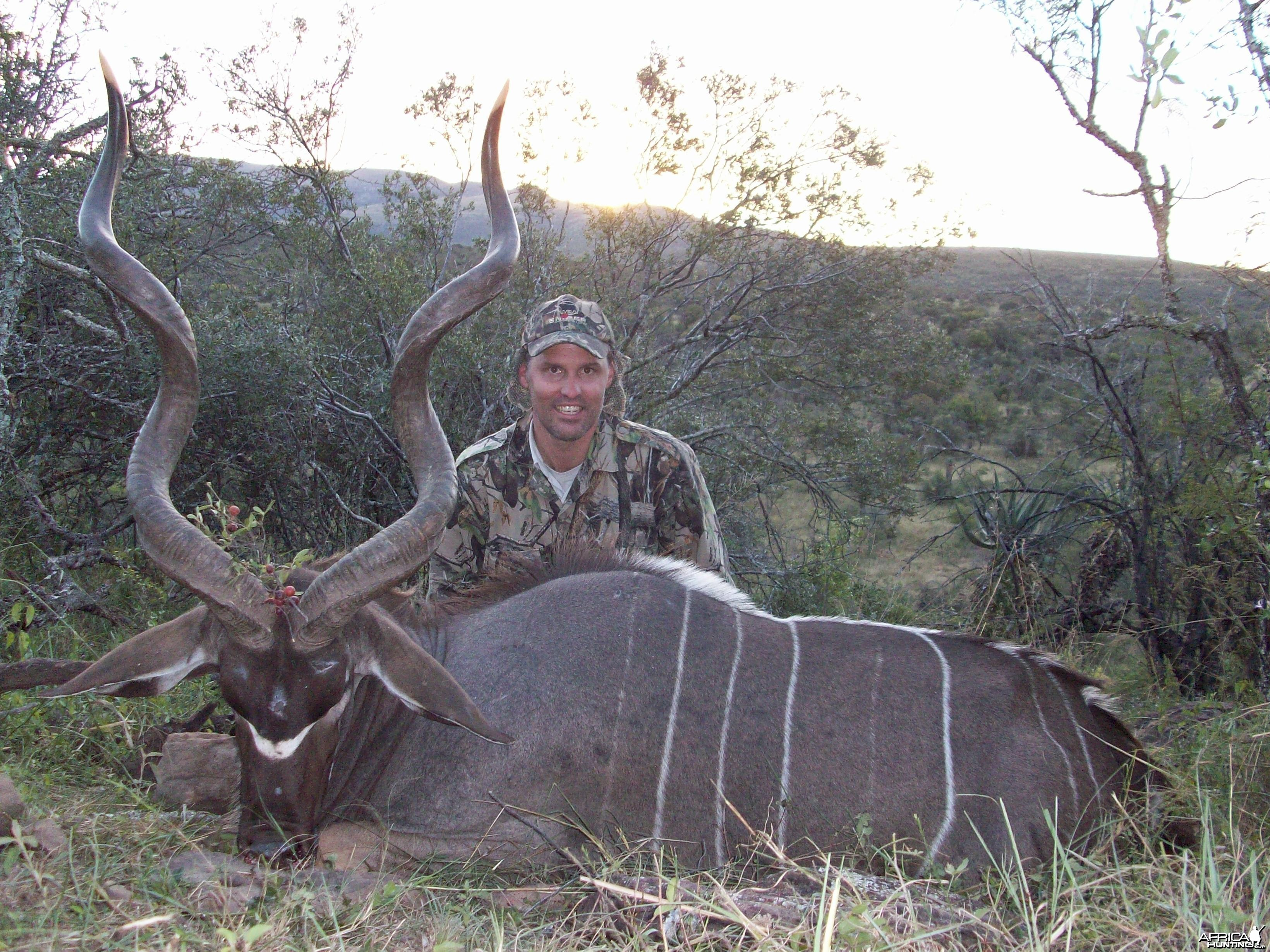 Early season Kudu