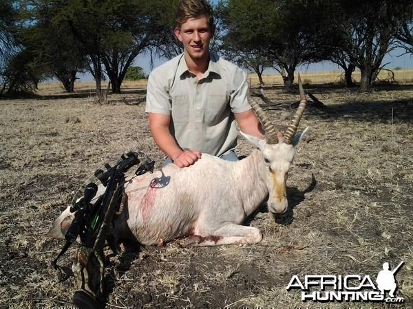 White blesbuck crossbow