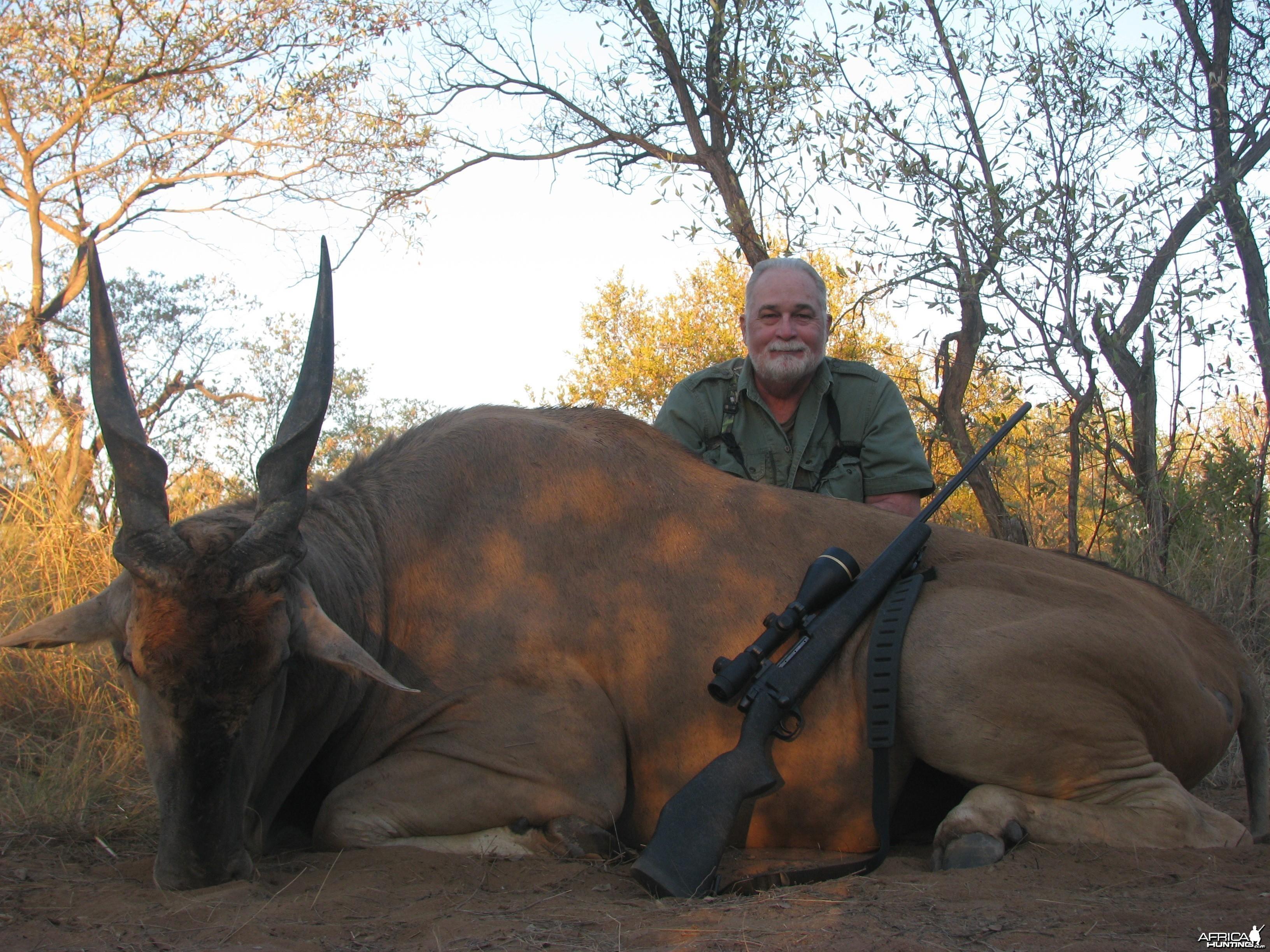Eland Hunted w/ Motshwere Safaris