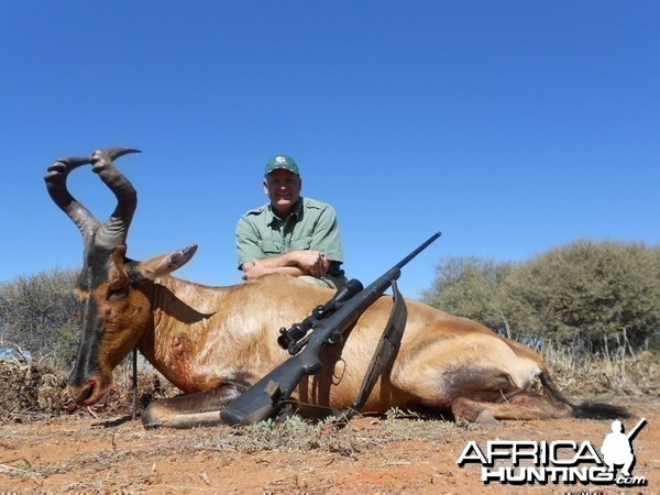 Steve Willbanks Red Hartebeest