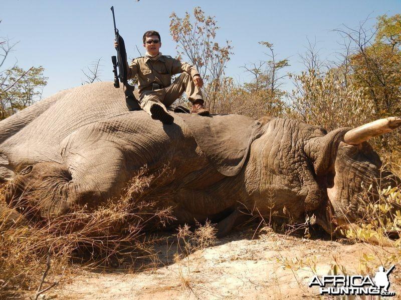 Botswana Elephant - 1