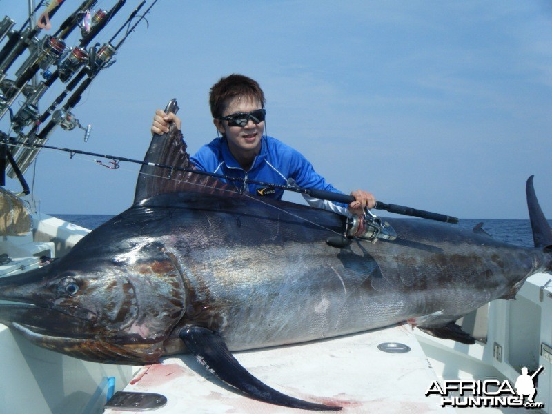 Andaman Black Marlin